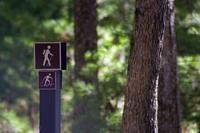 Trails Routes & Rustic Roads