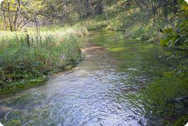 Lawrence Creek Trout Stream Pictures