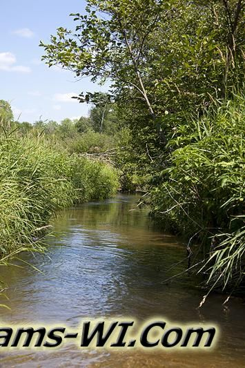 Adams County WI Class Trout Stream - Neenah Creek